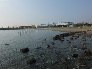 かわさきの浜