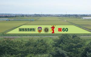 八郎潟町田んぼアート
