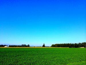 北海道絶景スポット
